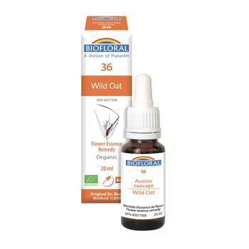 biofloral-biofloral-n36-wild-oat