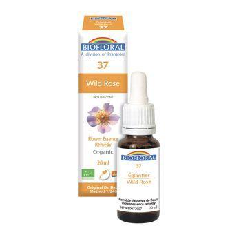 biofloral-biofloral-n37-wild-rose