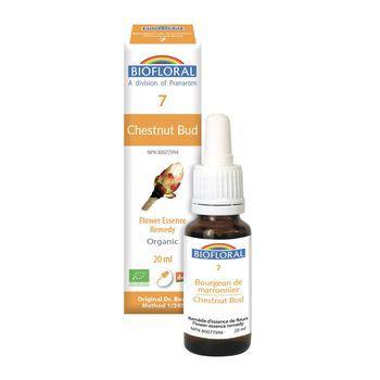 biofloral-biofloral-n7-chestnud-bud