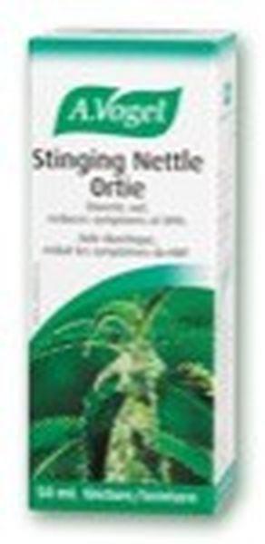 bioforce-canada-inc-stinging-nettle