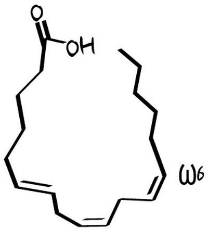 gla-gamolenic-acid-gla