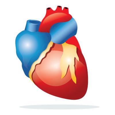 heart-attack-angina