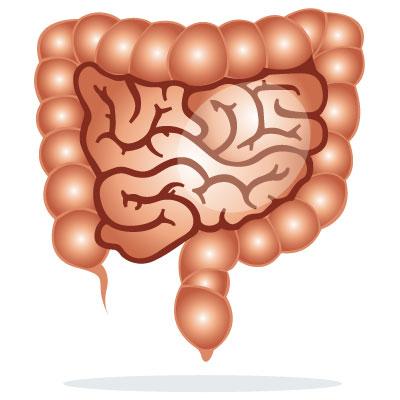 piles-hemorrhoids