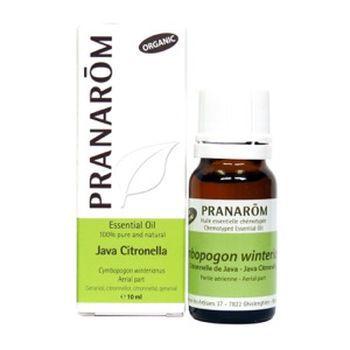 Pranarom Scientific Aromatherapy Java Citronella Cymbopogon